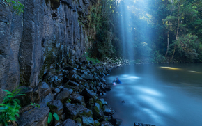 瀑布, 岩石, 石头, 池塘, 森林, 树, 景观