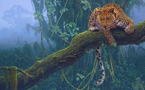 Rendering, 3d, animales, leopardo, naturaleza, gato
