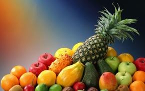 food, miscellanea, fruit, pineapple