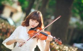 скрипка, азиатка, девушка, музыка