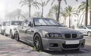 серая, BMW, бмв