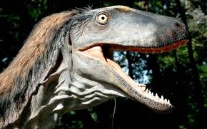动物, 怪兽, 恐龙, 恐龙, 大鳄, 渲染