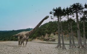 animals, Monsters, dinosaur, dinosaurs, predators, Seysmozavr