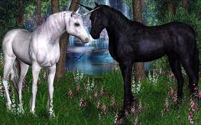 Фантастика, фэнтези, разное, единорог, лошадь.конь