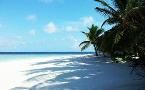стров, Мальдивы, тропики, красота, отпуск