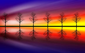 reflection, color, trees