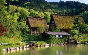 дом, вода., беседка, беревья, лес, Япония