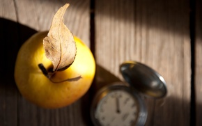 Yellow, wallpaper, background, fruit, leaflet, watch, Macro, Widescreen, leaflet, Widescreen, fullscreen, apple