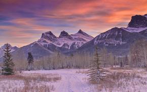 山, 冬天, 森林, 雪, 道路