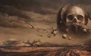 смерть, череп, пустыня