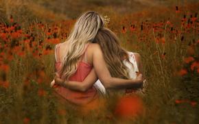цветы, поле, девушки