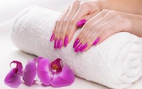 руки, орхидея, полотенце, маникюр