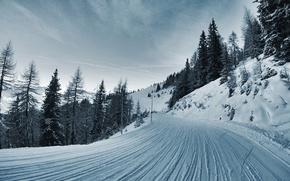 сопки, дорога, зима, ёлки, снег