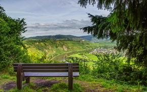 natura, Montagne, HORIZON, Un banco, foto, abete rosso, foresta, paesaggio