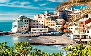 побережье, деревья, море, дома, здания, причал, берег, Чинкве-Терре, лодки, пейзаж, природа, Италия