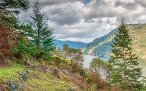 British Columbia, Vancouver Island, river, Mountains, trees, landscape