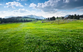 Appenzellerland, Elveția, domeniu, cer, Munți, peisaj