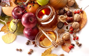 pears, fruit, autumn, Pialat, vegetables, briar, honey, nuts, chestnuts, food, foliage, spoon, jar, apples
