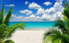 sky, ocean, sand, sea, Palms, shore, beach, sun, tropics