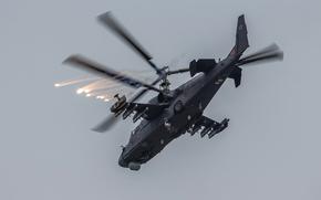 «Аллигатор», ударный, российский, вертолёт