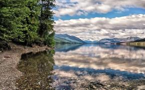 Montagne, lago, trasparenza, riflessione, alberi