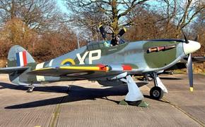 British, multi-purpose, fighter