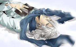 шарф, рубашка, книга, снег, зима, золотые глаза, белые волосы, парень, аниме