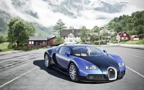 avtooboi, Bugatti, Bugatti, Veyron