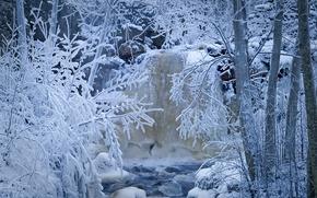деревья, ручей, снег, зима, речка, иней, лес, Швеция