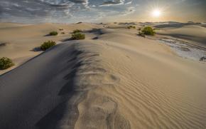 природа, песок, дюны, пустыня