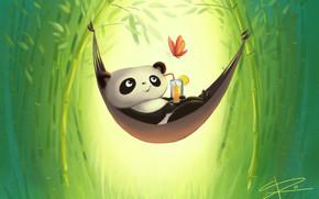 dibujo, recreación, mariposa, beber, panda, bambú, hamaca
