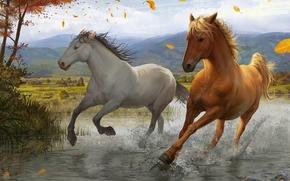 арт, листья, ветер, дерево, река, бег, брызги, лошади