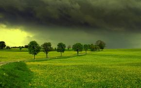 поле, тучи, дорога, деревья, пейзаж