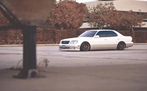 strojenie, biały, Lexus, Lexus