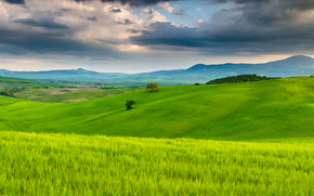 nature, clouds, Italy, trees, field, sky, Tuscany