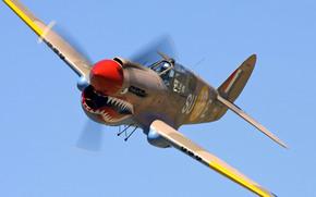 sky, plane, COLOR, shark, teeth, propeller, fighter, flight, aerography, jaws