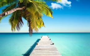 sea, sun, island, beach, sand, ocean, tropics, shore