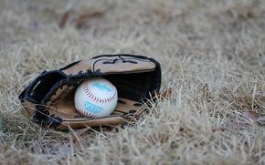 перчатка, спорт, мяч