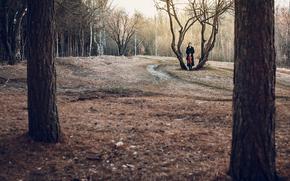 chica, soledad, alto, bosque