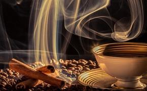 cup, coffee, cinnamon, Grain