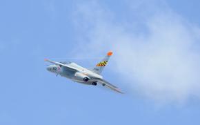 самолёт, небо, учебно-тренировочный, дозвуковой, полет