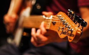 струны, макро, гитара