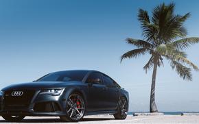 ауди, пальма, Audi