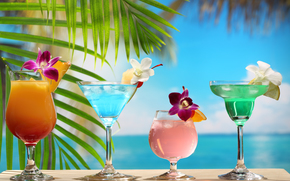 beach, palm leaves, Cocktails, Flowers