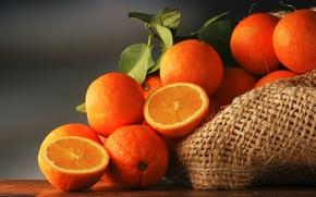 citrus, bag, oranges, fruit, foliage