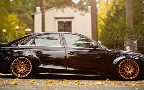 листья, осень, Audi