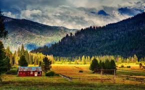 nuvole, abete rosso, cielo, domestico, campo, foresta, chiaro, Montagne