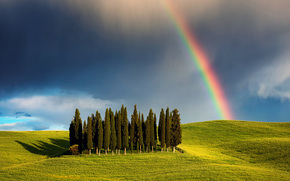 Cypress Hill, trees, May, Italy, CLOUDS, nature, Tuscany, clouds, rainbow, grove, sky, SPRING, field