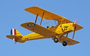 Тайгер Мот, ретро., тренировочным, биплан, де Хевилэнд, разработчик, Великобритании, Королевских ВВС, служил, самолетом, авиашоу, самолет, основным, коллекция, частная