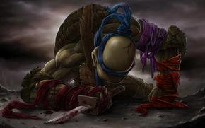 sword, Teenage Mutant Ninja Turtles, Katana, Tears, Leonardo, blood